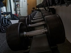 weights sitting in a gym