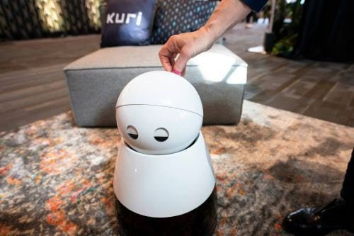 Household Robot Assistant