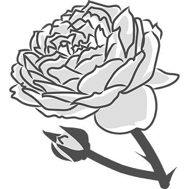 Damas Rose - Peter Thomas Roth Skin Care Ingredient Glossary