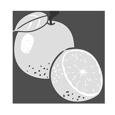 Orange Extract - Peter Thomas Roth Skin Care Ingredient Glossary