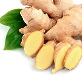 Ginger Root Extract - Peter Thomas Roth Skin Care Ingredient Glossary