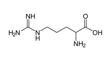 Arginine - Peter Thomas Roth Skin Care Ingredient Glossary