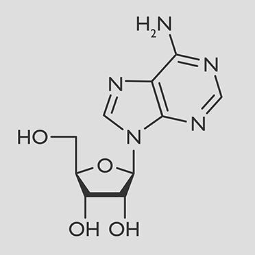 Adenosine - Peter Thomas Roth Skin Care Ingredient Glossary
