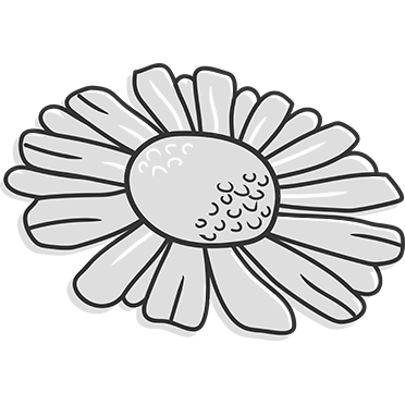 Chamomile Extract - Peter Thomas Roth Skin Care Ingredient Glossary