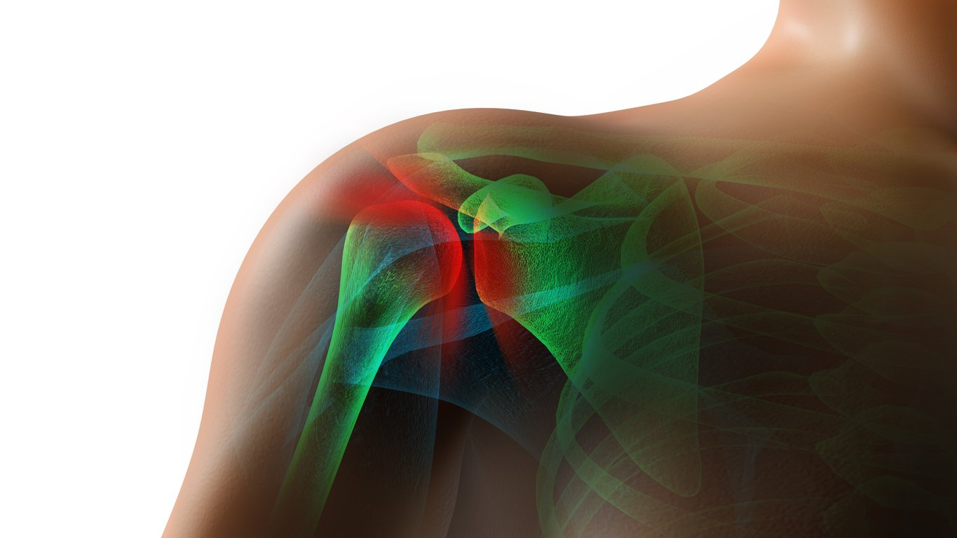 Image of the Shoulder Joint