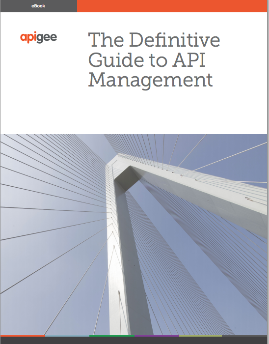 The definitive guide to API management ebook