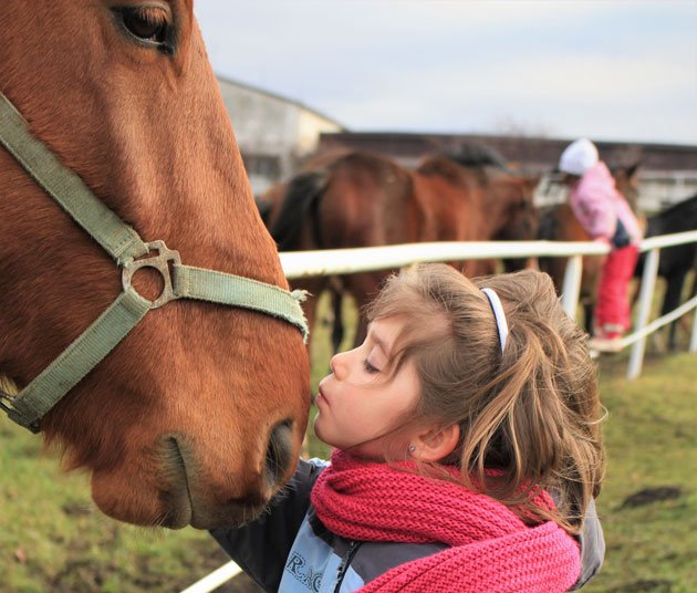Top 10 Benefits of Owning Horses for Kids: Part 1
