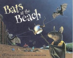 bats-at-the-beach-brian-lies.jpg